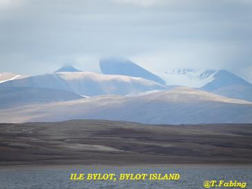 Bylot Isl.jpg