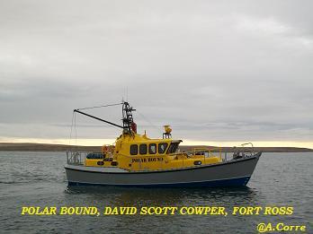 Polar Bound.jpg