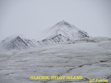glacier bylot.jpg